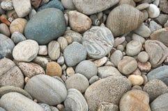 Grijze die cobbles door riviererosie bij een vroeger rivierbed rond wordt gemaakt Royalty-vrije Stock Foto's