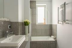Grijze en witte badkamers stock fotografie