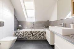 Grijze en witte badkamers stock foto