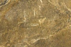Grijze gele steenplak met witte vlekken, krassen en barsten natuurlijke oppervlaktetextuur royalty-vrije stock foto's