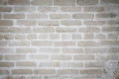Grijze gepleisterde muur Stock Foto