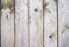 Grijze geweven houten achtergrond stock afbeeldingen