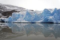 Grijze gletsjer royalty-vrije stock afbeelding