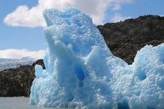 Grijze Gletsjer Royalty-vrije Stock Foto