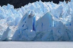 Grijze Gletsjer Stock Foto's