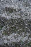Grijze grondtextuur met stenen en zand Royalty-vrije Stock Fotografie