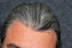 Grijze haarmensen Stock Foto's
