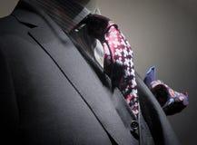 Grijze jasje, vest, band en zakdoek Stock Foto