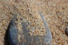 Grijze kiezelstenen met geel zand op een zandig strand Stock Foto