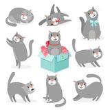 Grijze leuke katteninzameling vector illustratie