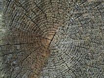 Grijze natuurlijke houten achtergrond close-up stock fotografie