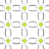 Grijze ornament netto groene bloemen en witte kruisen vector illustratie