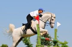 Grijze paard en ruiter over een sprong Royalty-vrije Stock Afbeeldingen