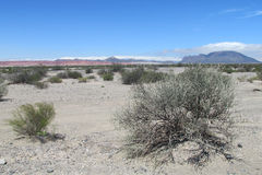 Grijze steenwoestijn stock afbeeldingen