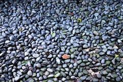 Grijze stenen Stock Afbeelding