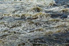 Grijze waterbroodjes door stroomversnelling, Vuoksa-Rivier royalty-vrije stock fotografie