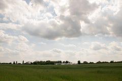 Grijze wolken Stock Fotografie