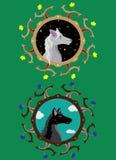 Grijze zij-wolf en Zwarte wolf Stock Afbeeldingen