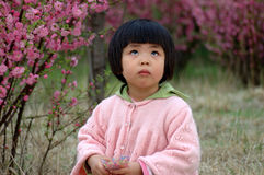 Gril 4. Baby girl in spring season Stock Images