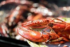 Gril de homard photos libres de droits