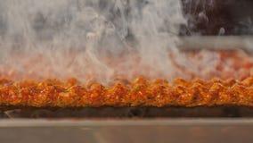 Gril turc de chiche-kebab Images libres de droits