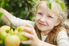 Gril z kędzierzawym włosy podnosi up jabłka Obrazy Stock
