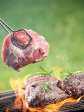 Griled meat Stock Photos