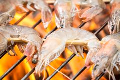 Griled prawns Stock Photos