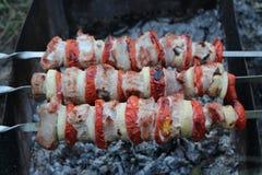 Grillów skewers z mięsnymi pomidorami i cebulą na plenerowym grillu z popielatym popiółem Fotografia Stock