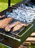 grillów ziobro zdjęcia stock