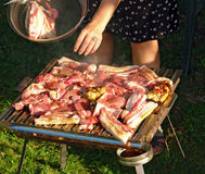 Grill. Delicious chicken and pork meat on the barbecue Royalty Free Stock Photo