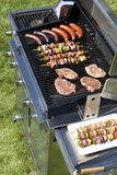 The grill Stock Photos