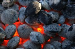 Grill. Burning coal on a grill Stock Image