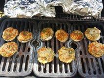 grill Obraz Stock