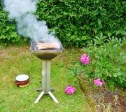 grill Stockfotografie