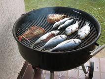 Grill. Baked fish Stock Photography