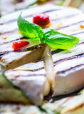 Grill Brie camembert cheese zucchini with chili pepper and olive oil. Italian mediterranean or greek cuisine. Royalty Free Stock Images