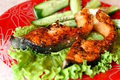 Grill broiled salmon steak. Grilled salmon steak with salad and cucumbers royalty free stock image