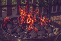 Grill. Burning wood briquettes on grill Stock Images