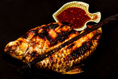 Grill carp in isolated on  black background Stock Photography