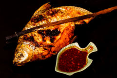 Grill carp in isolated on  black Royalty Free Stock Images