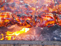 Grill chicken Stock Image