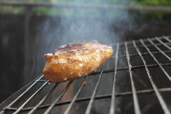 Grill chicken. Photo of detailed spicy chicken on the grill Stock Image
