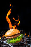 Grill concept with flare on background Royalty Free Stock Images