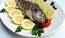 Grill cooked fish with lemon slices Stock Photography