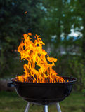 Grill in den Flammen Stockbild