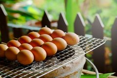 Grill egg stick on grille is organic Thai tradition steed food in local market Royalty Free Stock Photos