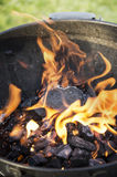 Grill Fire in summer garden Stock Image