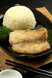 Grill fish royalty free stock images