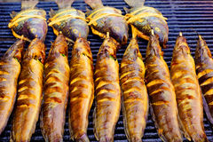 Grill fish BBQ Royalty Free Stock Photos